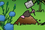 STERN: Ströbele-Plakat - Das bunte Wahlkampf-Chaos